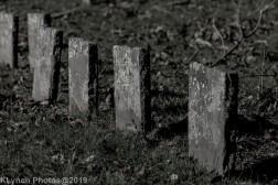 Cemetery_BlackandWhite_18