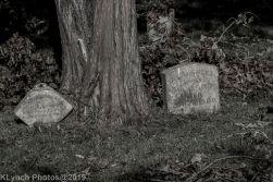 Cemetery_BlackandWhite_41