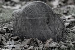 Cemetery_BlackandWhite_81