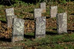 Cemetery_Color_1