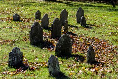 Cemetery_Color_105