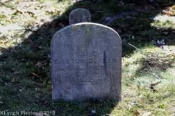 Cemetery_Color_118