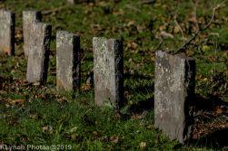 Cemetery_Color_18