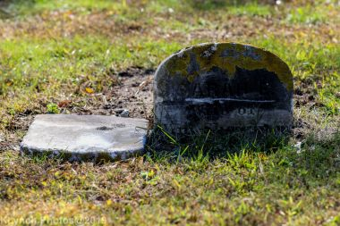 Cemetery_Color_20