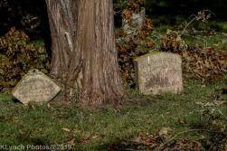 Cemetery_Color_41