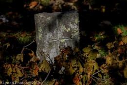 Cemetery_Color_48
