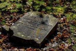 Cemetery_Color_49