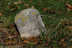 Cemetery_Color_5