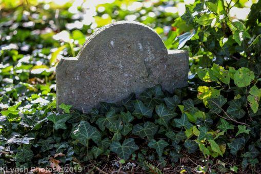 Cemetery_Color_60