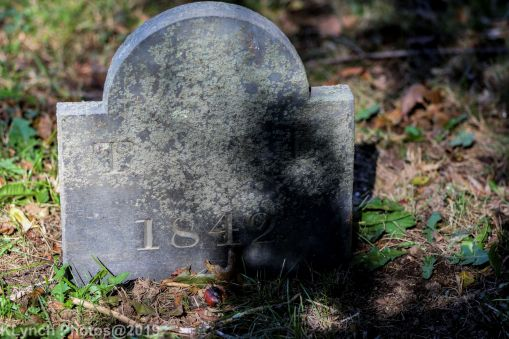 Cemetery_Color_63