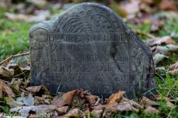 Cemetery_Color_81