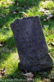 Cemetery_Color_95