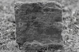Smallpox Black White_1