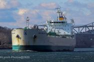 Ship_15